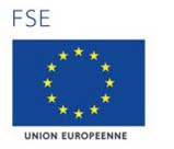 FSE-Union_europeenne.jpg